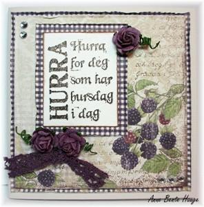 AB Mini maja Hurra feb12 Medium Web view